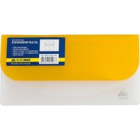 Папка-конверт на липучці DL (асорті) bm.3708-99
