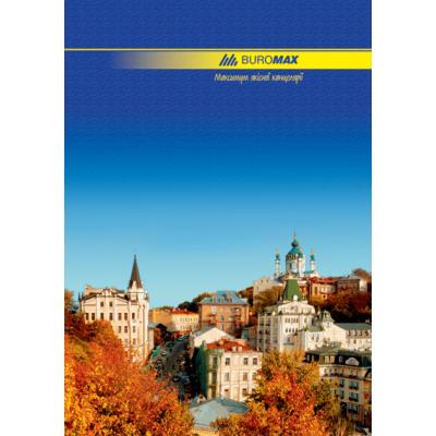 Книга канцелярская А4 96 листов (линия) bm.2401