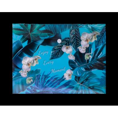 Папка-конверт на кнопке В5 EXOTIC (голубая)