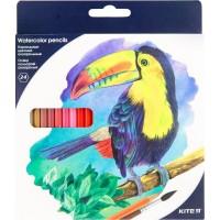 Олівці кольорові акварельні (24 кольори)  K18-1050