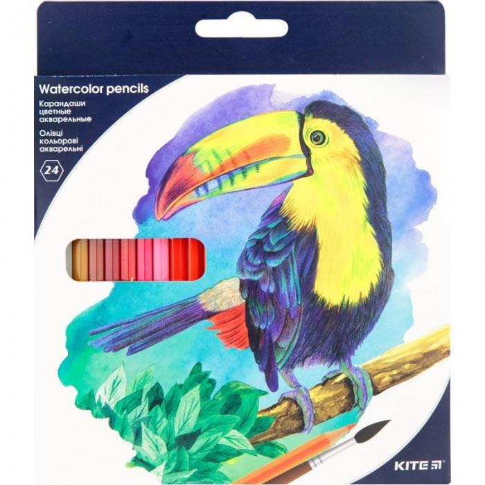 Карандаши цветные акварельные (24 цвета)  K18-1050